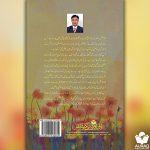 Muhabbat K Rang by Afzal Ansari - Back